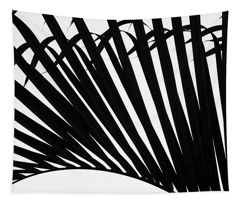 Palm Tapestry featuring the photograph Black And White Palm Branch by Christopher Johnson