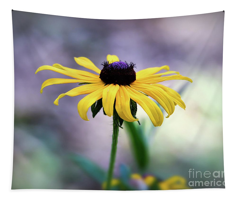 Black-eyed Susan Tapestry featuring the photograph Black-eyed Susan by Kerri Farley