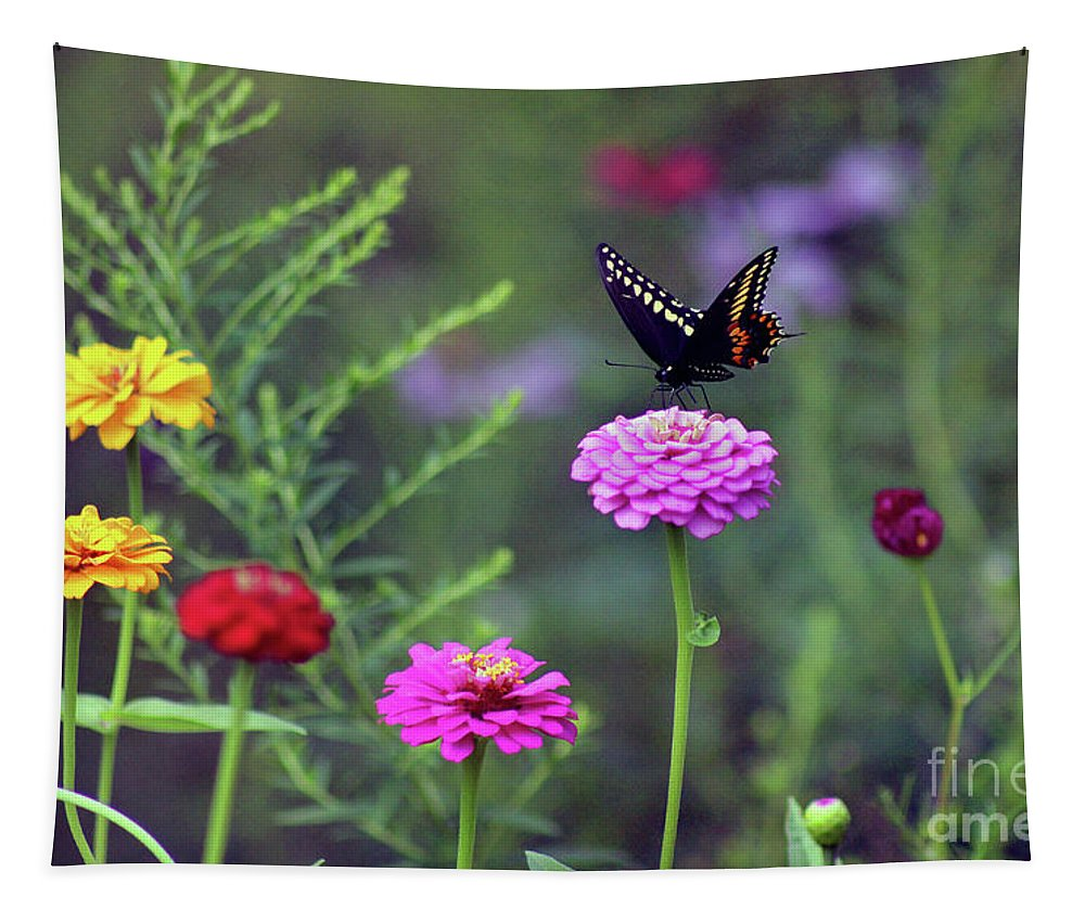 Butterfly Tapestry featuring the photograph Black Swallowtail Butterfly In August by Karen Adams