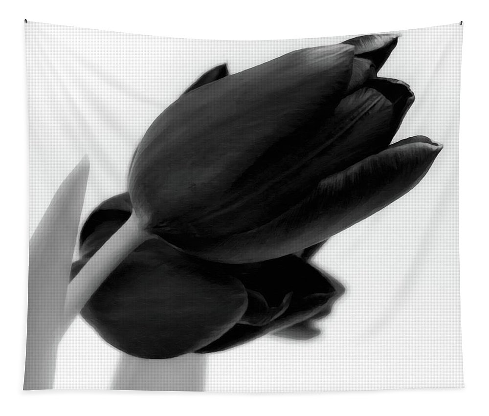Tulips Tapestry featuring the photograph Black Tulips by Wim Lanclus