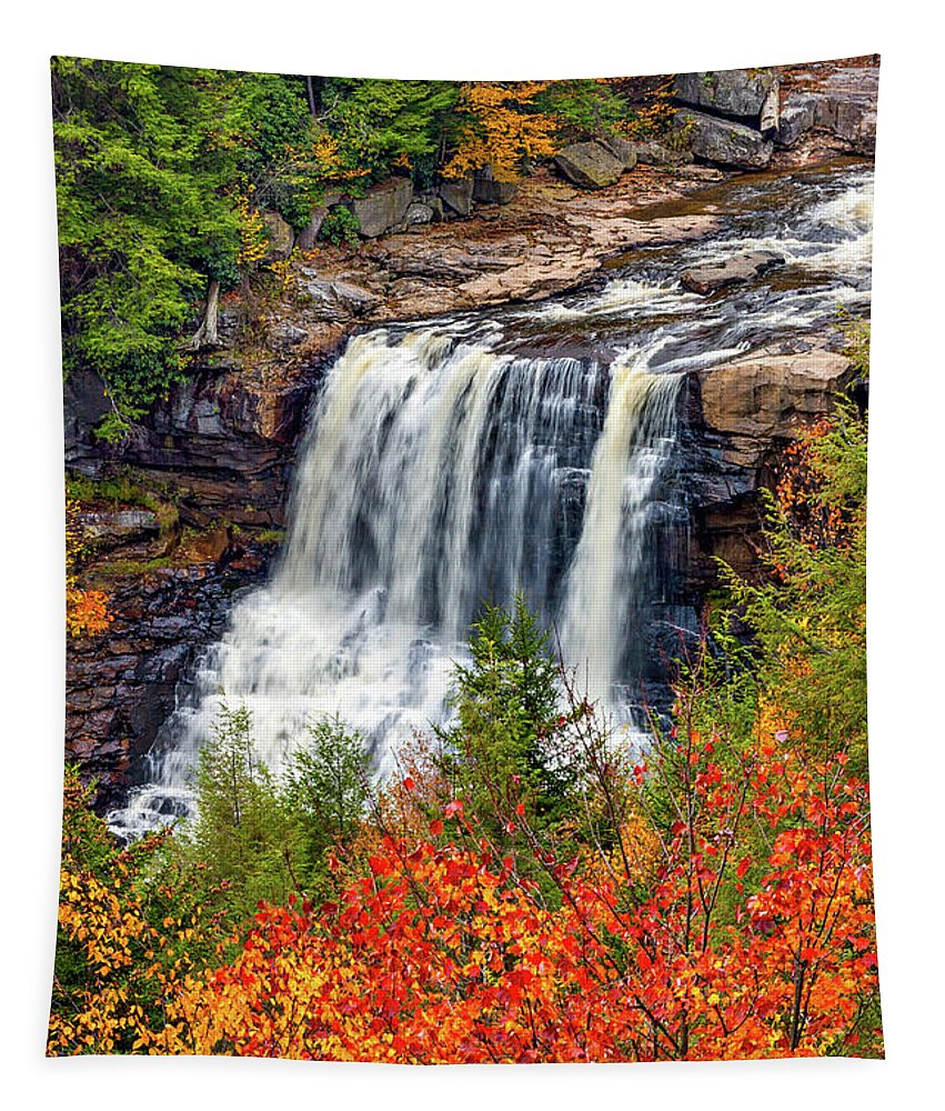 West Virginia Tapestry featuring the photograph Blackwater Falls by Steve Harrington