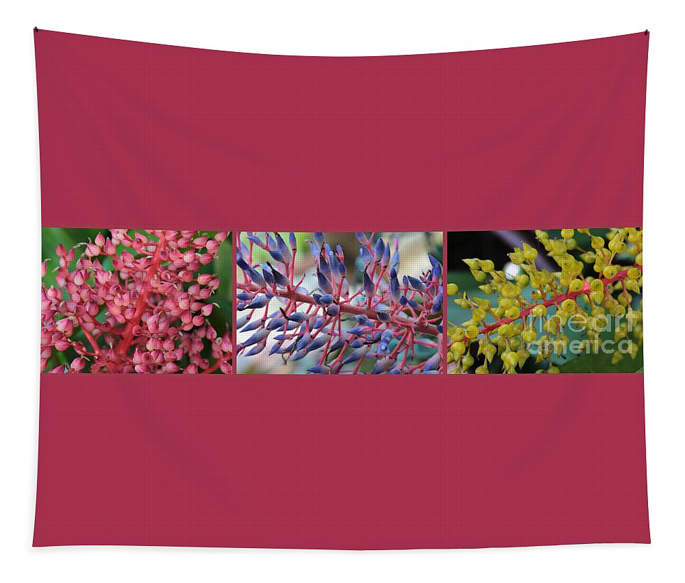 Bromeliads Tapestry featuring the photograph Blooming Bromeliads Collage by Carol Groenen