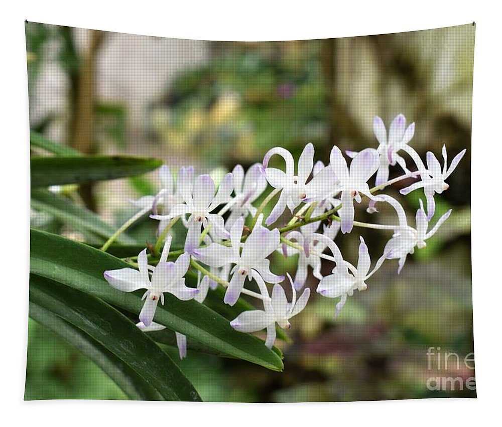 Flowers Tapestry featuring the photograph Blooming White Flower Spike by James Fannin