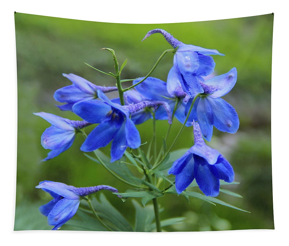Blue Tapestry featuring the photograph Blue Bell by Sergey Lukashin