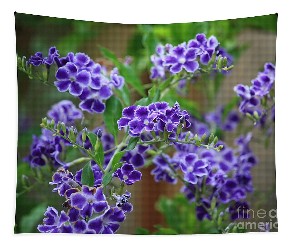 Blue Tapestry featuring the photograph Blue Cottage Flowers by Carol Groenen