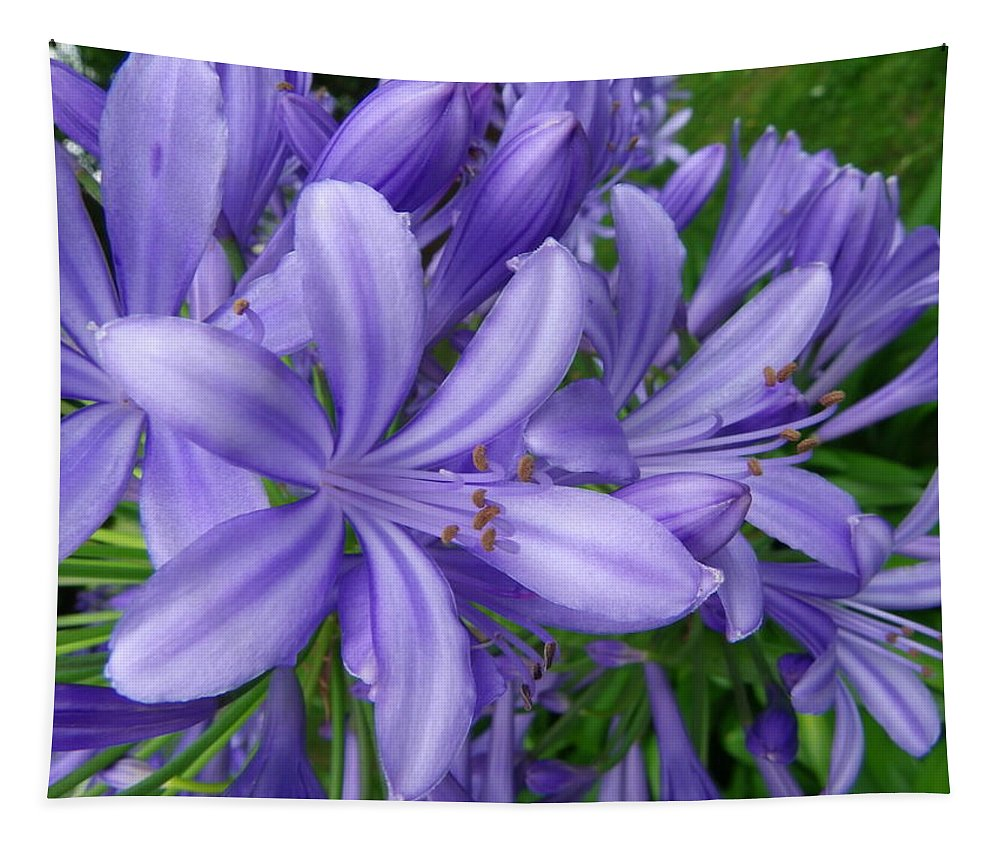 Flower Tapestry featuring the photograph Blue Delight by Charleen Treasures