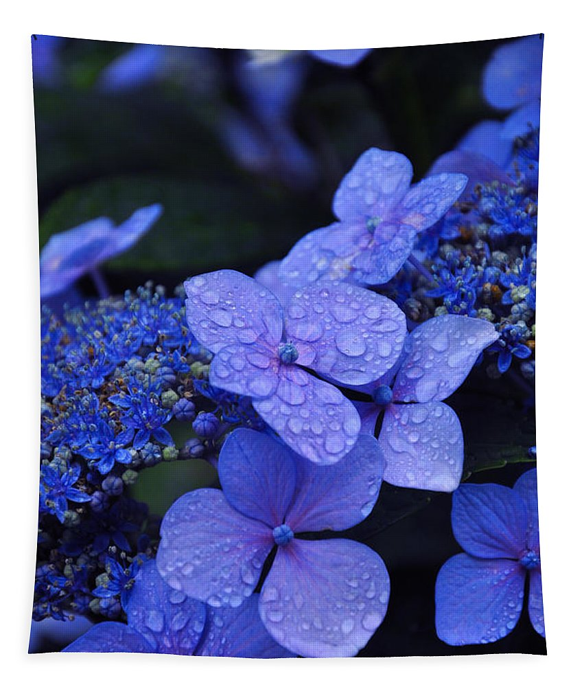 Flowers Tapestry featuring the photograph Blue Hydrangea by Noah Cole