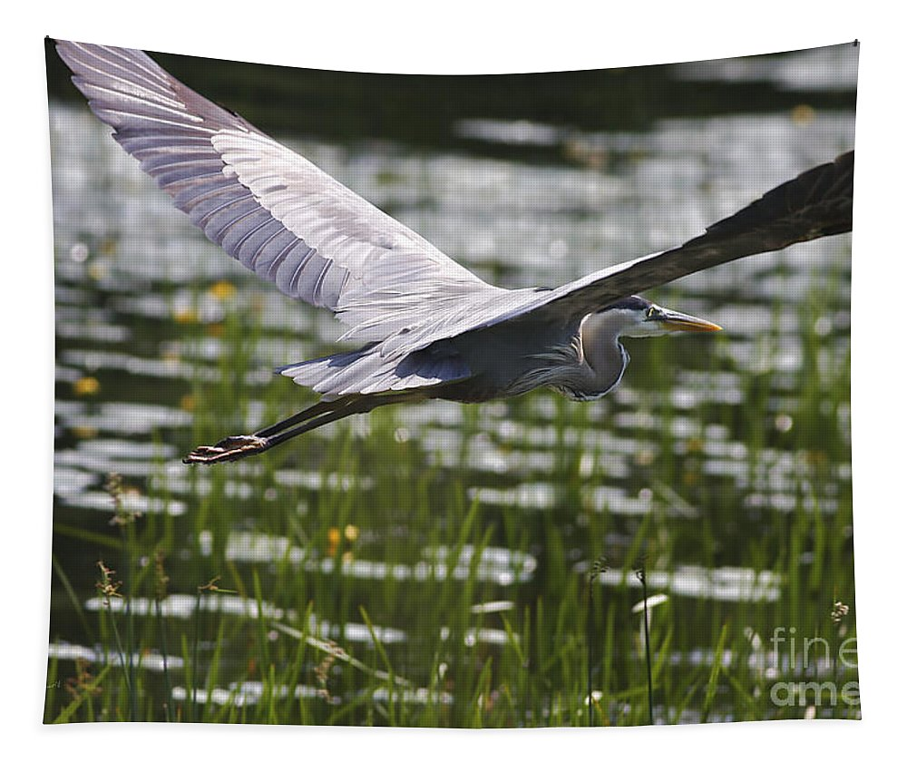 Heron Tapestry featuring the photograph Blue In Low Glide by Deborah Benoit