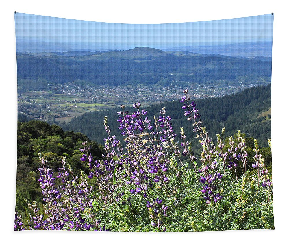 Blue Pod Lupine Tapestry featuring the photograph D3b6377-blue Lupine And Kenwood by Ed Cooper Photography
