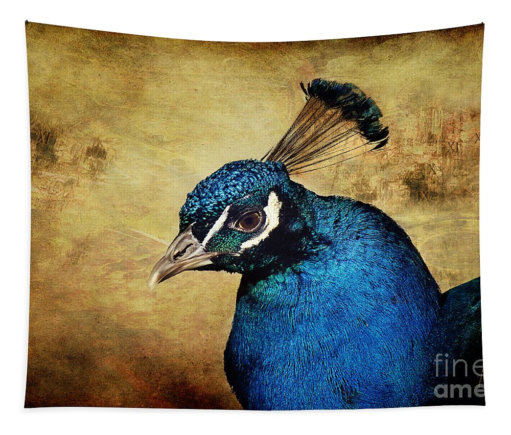 Peacock Tapestry featuring the photograph Blue Peacock by Angela Doelling AD DESIGN Photo and PhotoArt