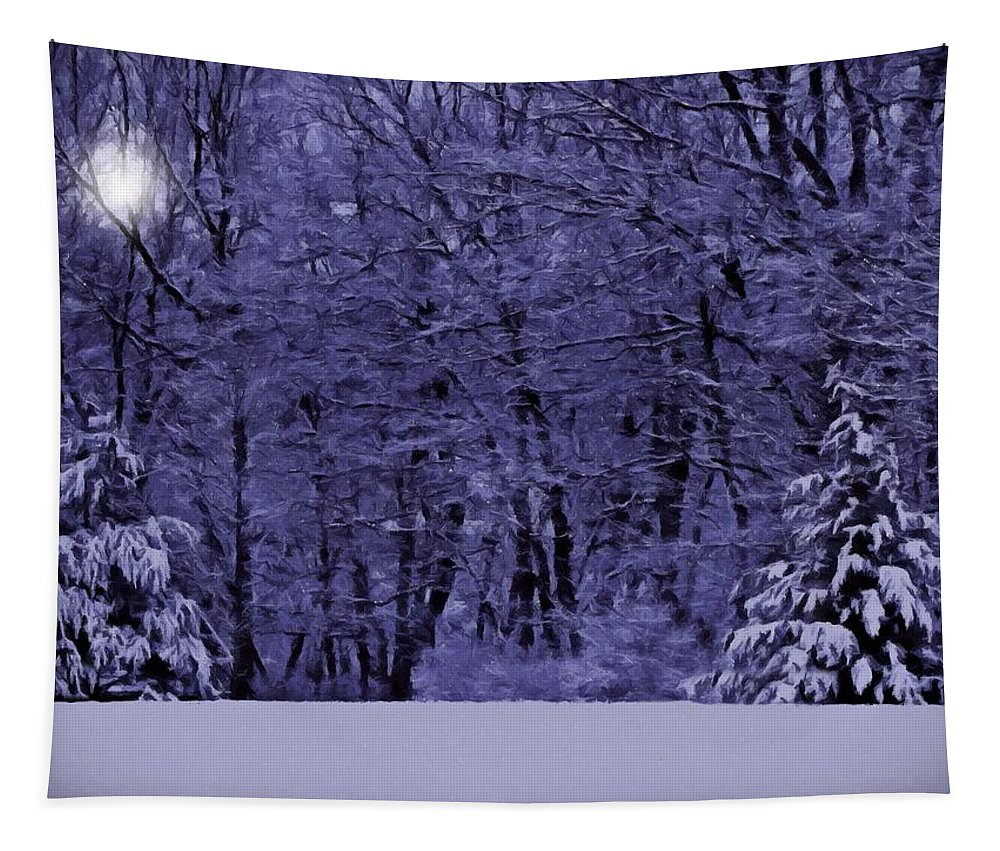 Snow Tapestry featuring the photograph Blue Snow by David Dehner