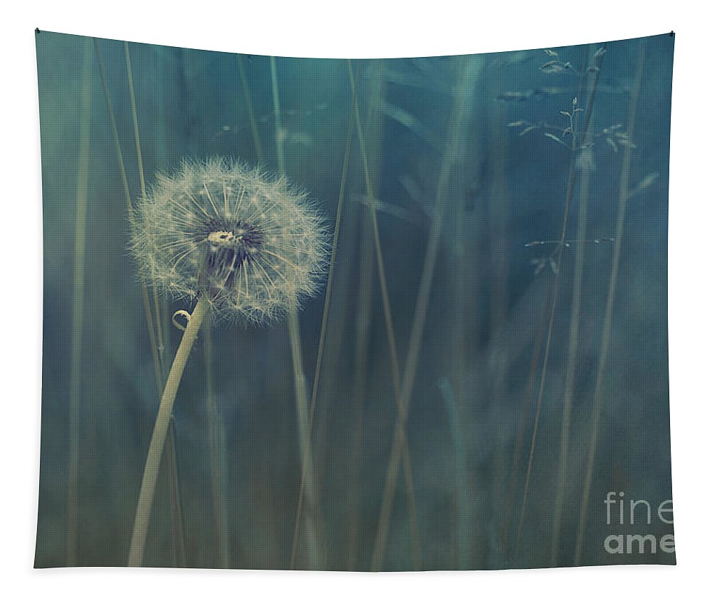 Blowball Tapestry featuring the photograph Blue Tinted by Priska Wettstein