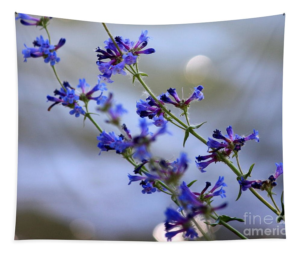 Blue Tapestry featuring the photograph Blue Wildflowers Over Rimrock Lake by Carol Groenen