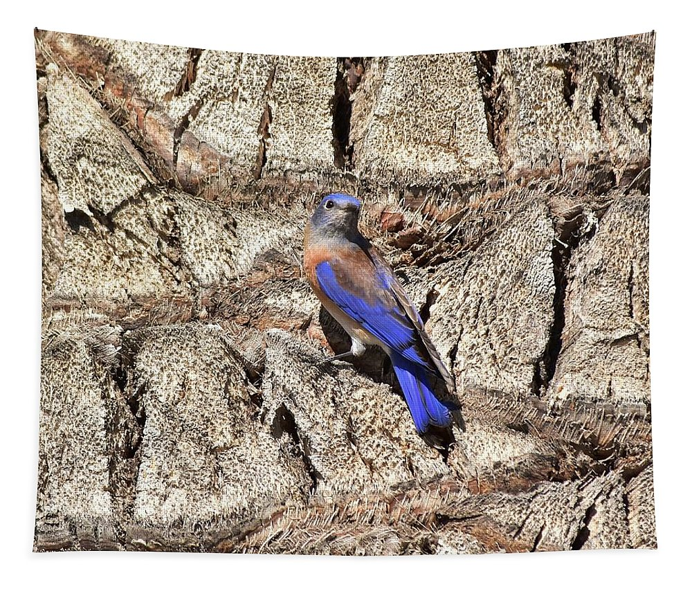 Linda Brody Tapestry featuring the photograph Bluebird On Canary Island Palm II by Linda Brody