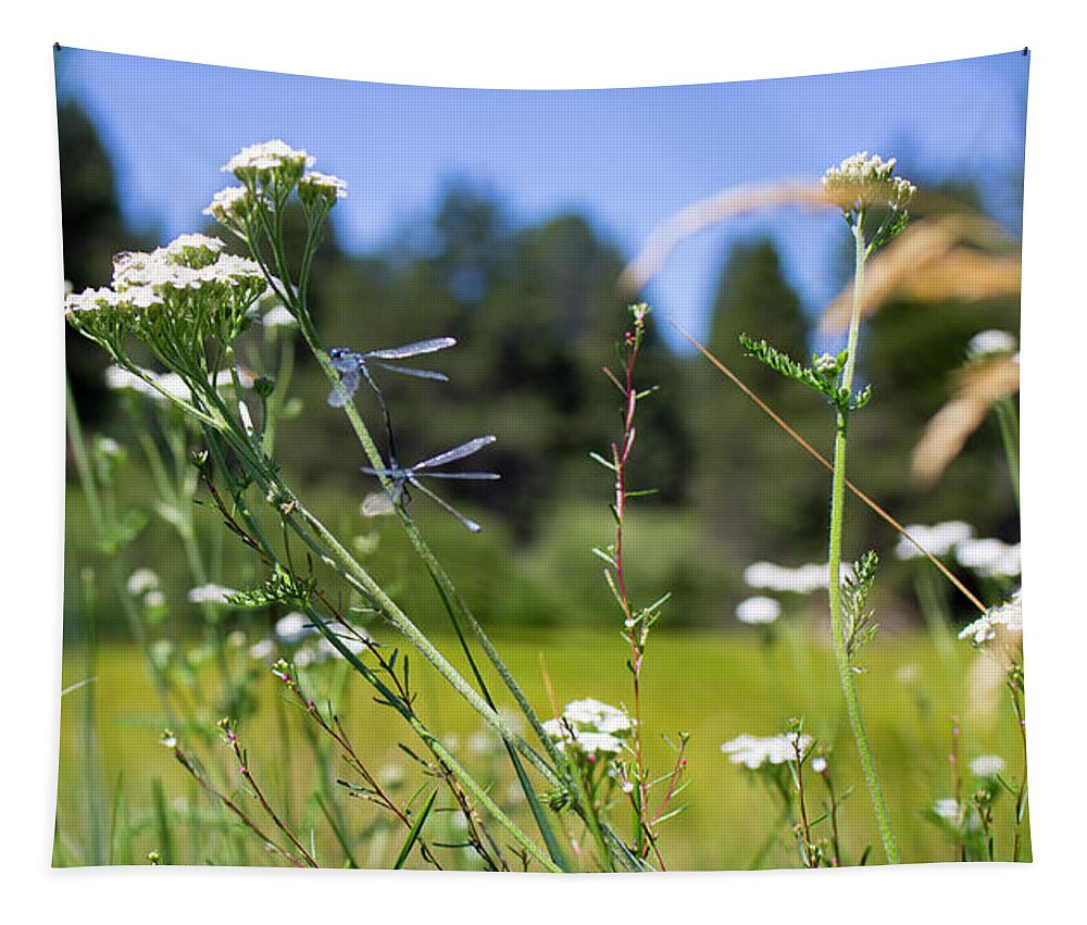 Wild Flowers Tapestry featuring the photograph Bluff Lake Wild Flowers 2 by Chris Brannen