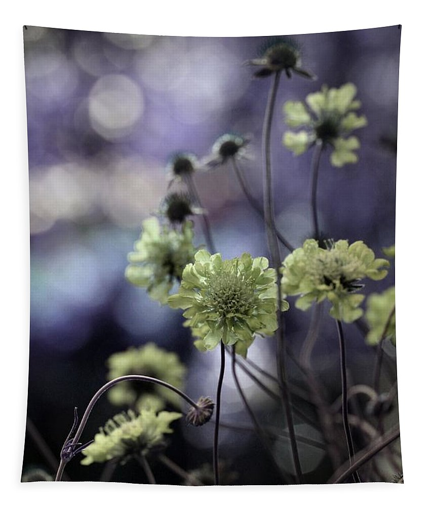 Pincushion Flowers Tapestry featuring the photograph A Meadow's Blur Of Nature by Gothicrow Images