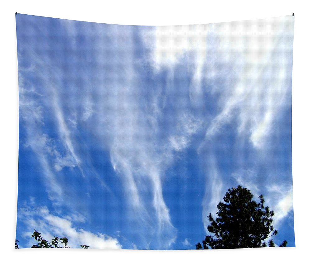 Sky Tapestry featuring the photograph Blustery Sky by Will Borden