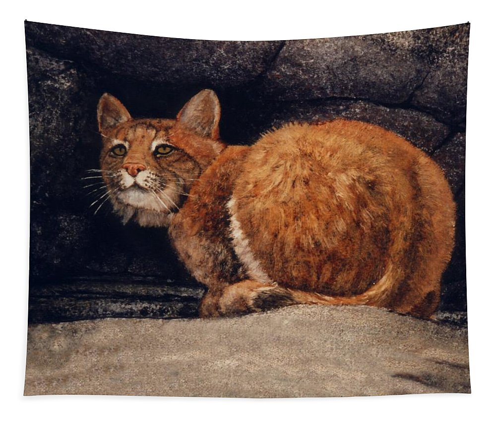 Wildlife Tapestry featuring the painting Bobcat On Ledge by Frank Wilson