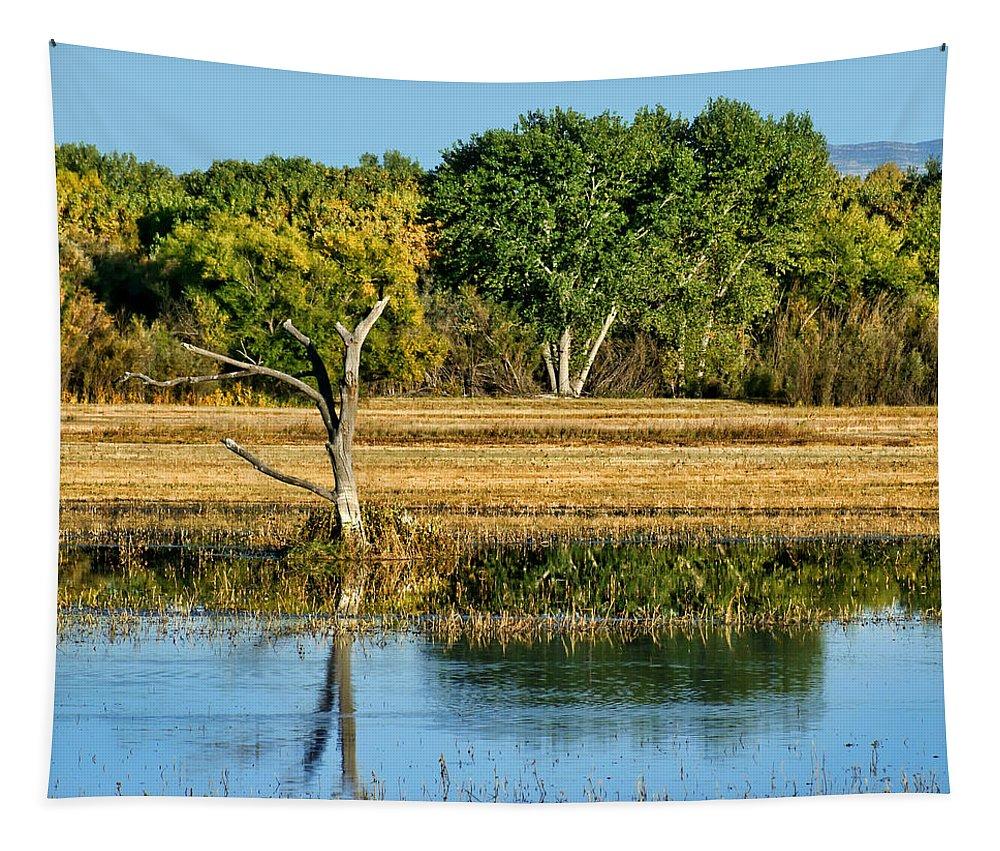 Bosque Del Apache Tapestry featuring the photograph Bosque Del Apache - New Mexico by Nikolyn McDonald