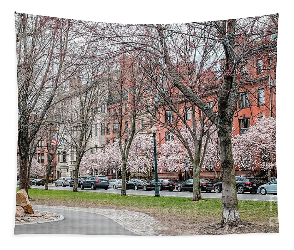 April Tapestry featuring the photograph Boston Back Bay In Spring by Edward Fielding
