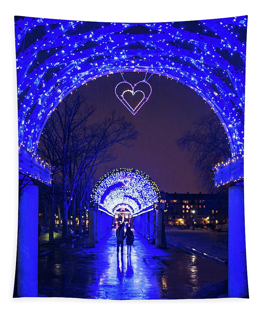 Boston Tapestry featuring the photograph Boston Ma Christopher Columbus Park Trellis Lit Up For Valentine's Day Rainy Night by Toby McGuire