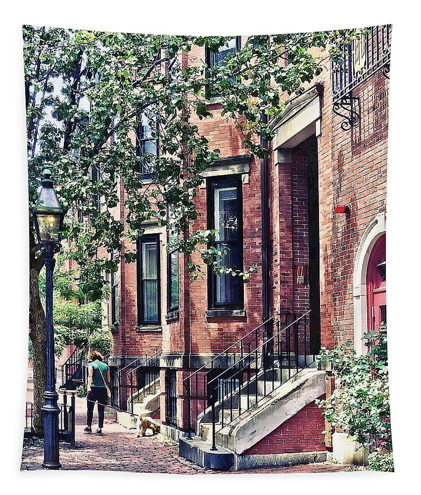 Boston Tapestry featuring the photograph Boston Ma - Walking The Dog On Mount Vernon Street by Susan Savad