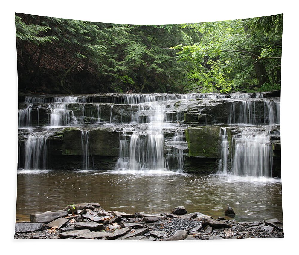 Waterfall Tapestry featuring the photograph Bozeman Falls by Paul Tokarchuk