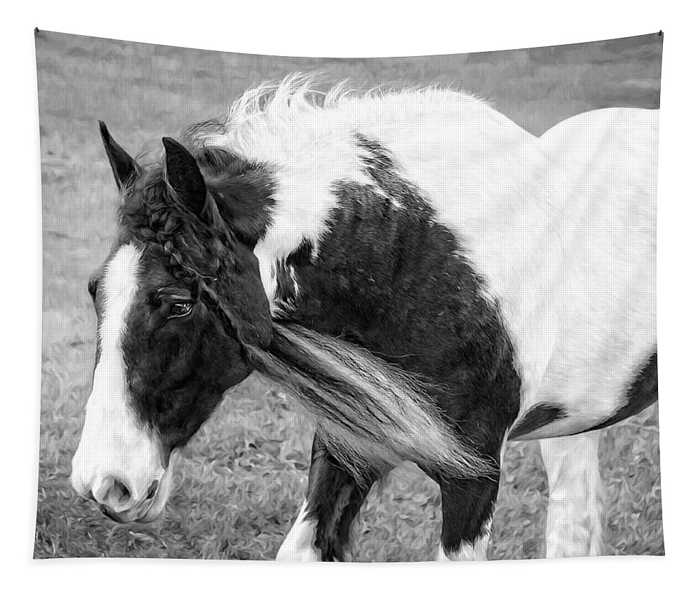 Alicegipsonphotographs Tapestry featuring the photograph Braids In Mane B/w by Alice Gipson