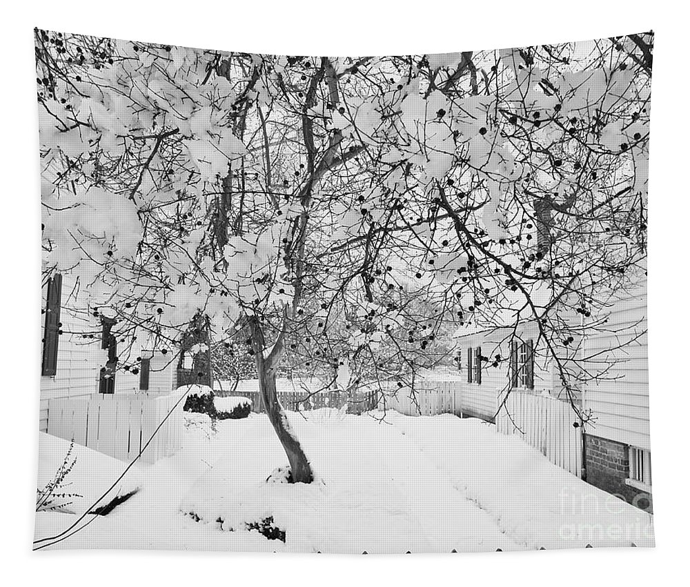Tree Tapestry featuring the photograph Branches In Snow by Rachel Morrison
