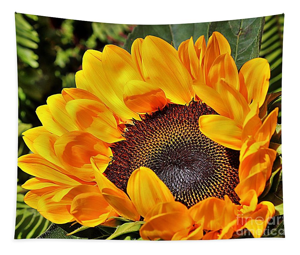 Sunflower Tapestry featuring the photograph Brash by Clare Bevan
