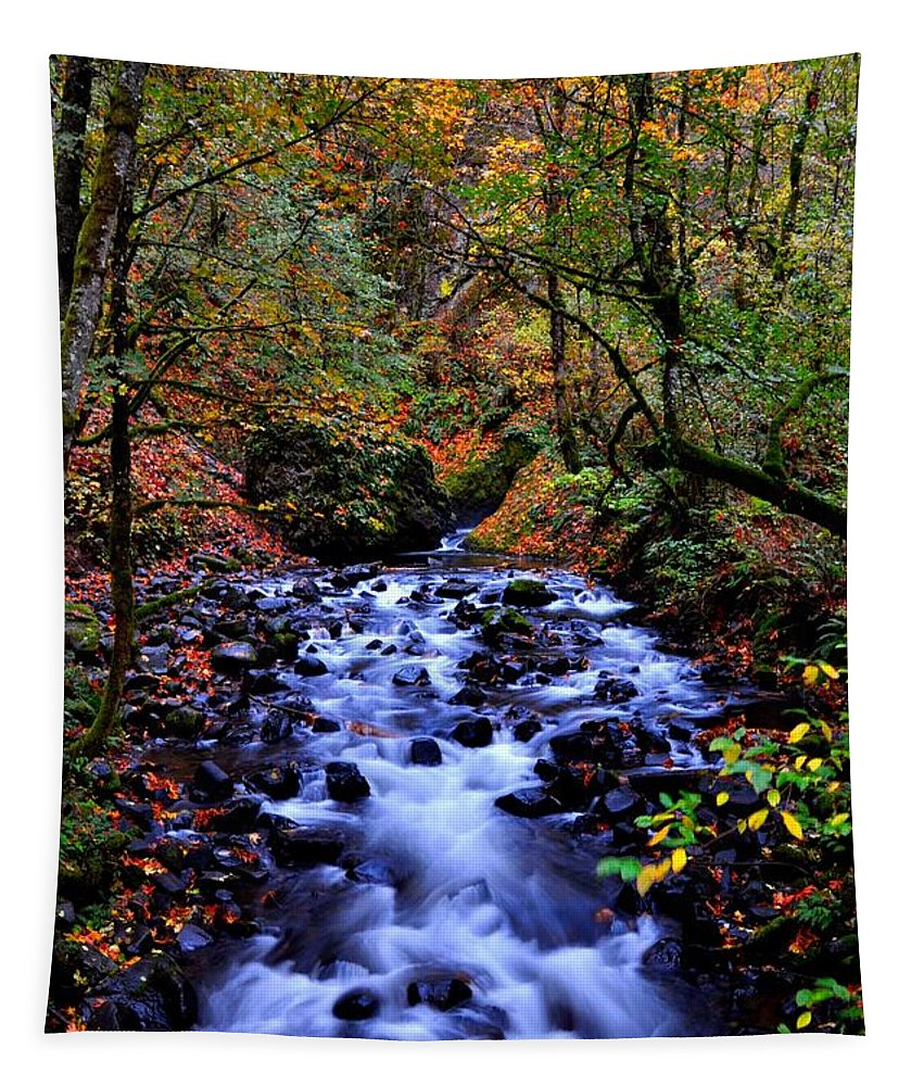 Stream Tapestry featuring the photograph Bridal Veil Creek by Noah Cole