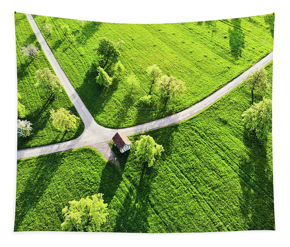 Green Tapestry featuring the photograph Bright Green Spring Meadow Aerial Photo by Matthias Hauser