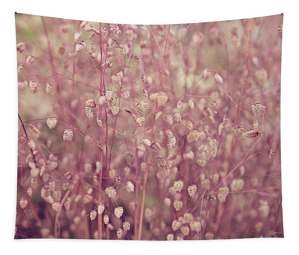 Bloom Tapestry featuring the photograph Briza Media Limouzi Decorative Quaking Grass by Monika Tymanowska