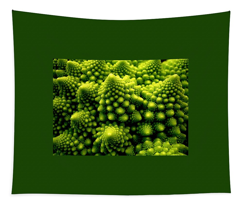 Broccoli Tapestry featuring the photograph Broccoli by Dragica Micki Fortuna