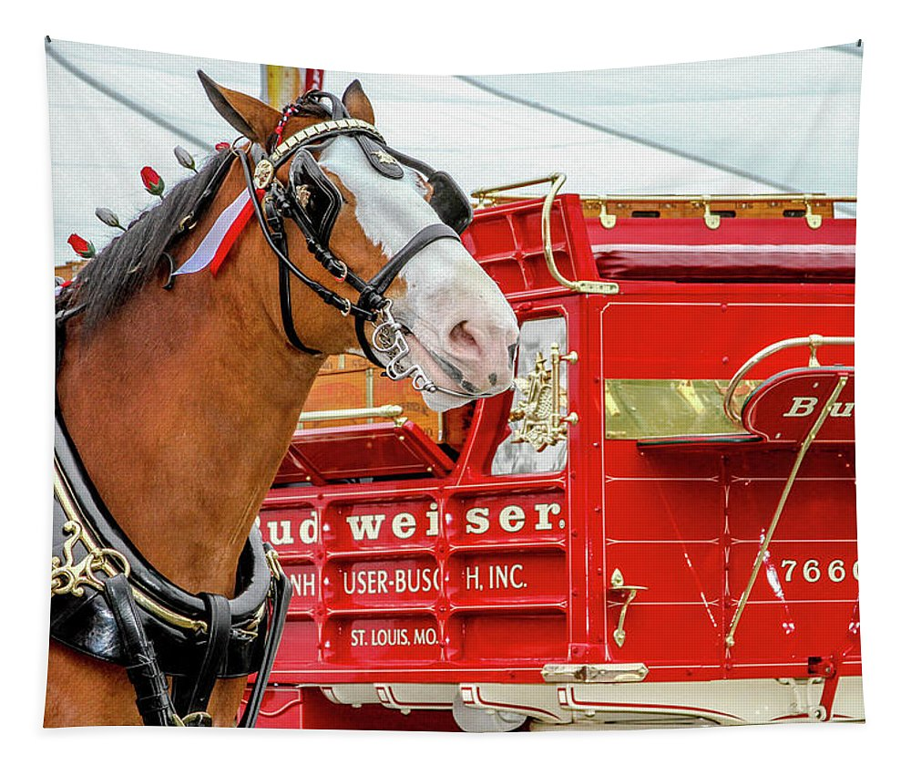 Budweiser Tapestry featuring the photograph Budweiser Clydesdale In Full Dress by Bill Gallagher