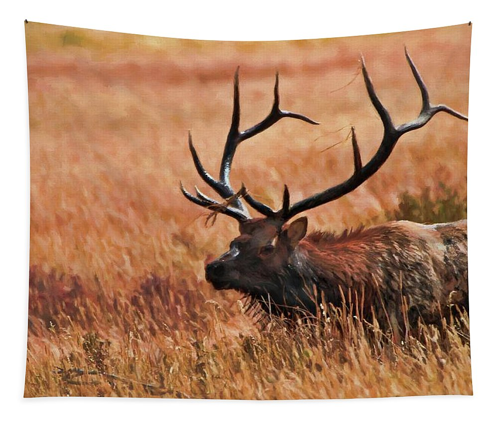 Bull Elk In A Field Tapestry featuring the mixed media Bull Elk In A Field by Dan Sproul