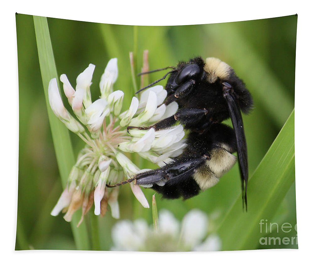 Bumble Bee Tapestry featuring the photograph Bumble Bee By The Pond by Carol Groenen