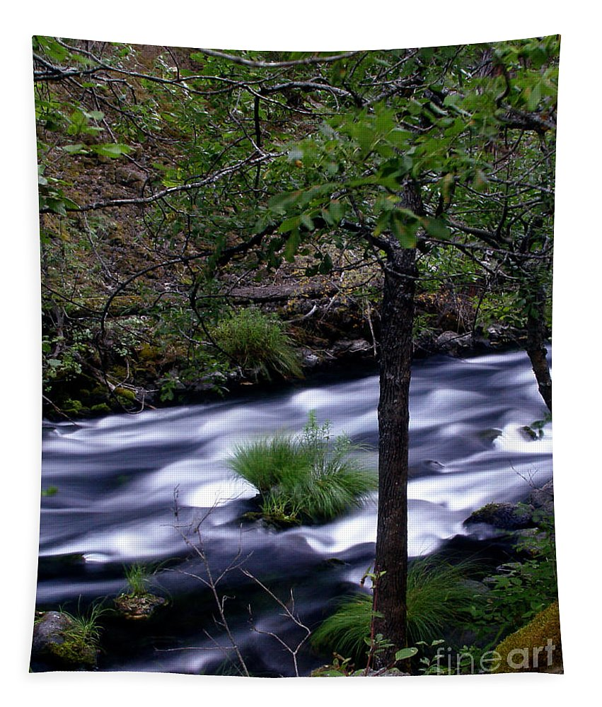 River Tapestry featuring the photograph Burney Creek by Peter Piatt