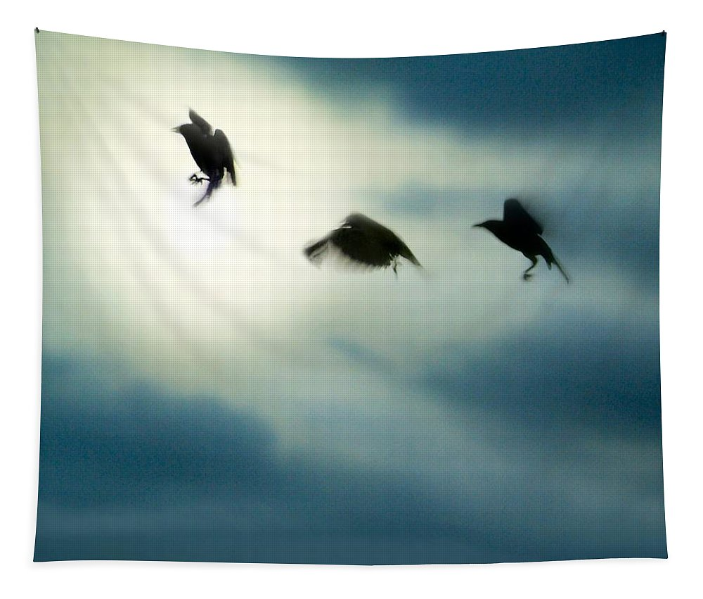 Crows In Motion Tapestry featuring the photograph Burst Of Crows by Gothicrow Images