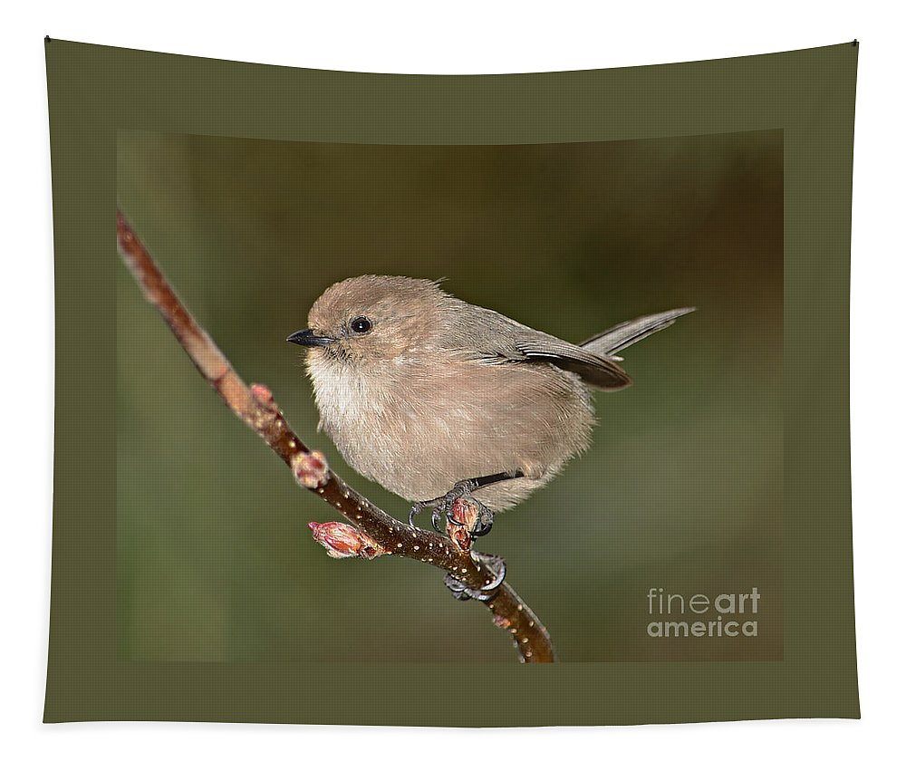 Animal Tapestry featuring the photograph Bushtit On A Branch by Marv Vandehey