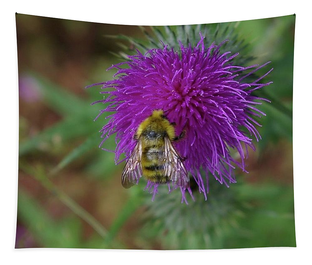 Bees Tapestry featuring the photograph Busy Bumble Bee by Jeff Swan