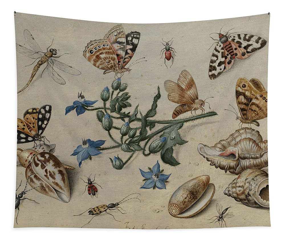 Jan Tapestry featuring the painting Butterflies, Clams, Insects And Flowers by Jan van Kessel