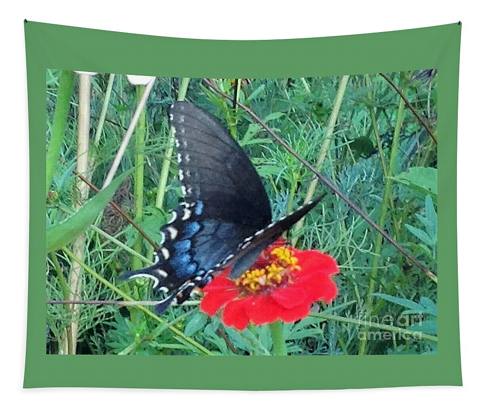 Butterfly Tapestry featuring the photograph Butterfly And Flower by Debra Lynch