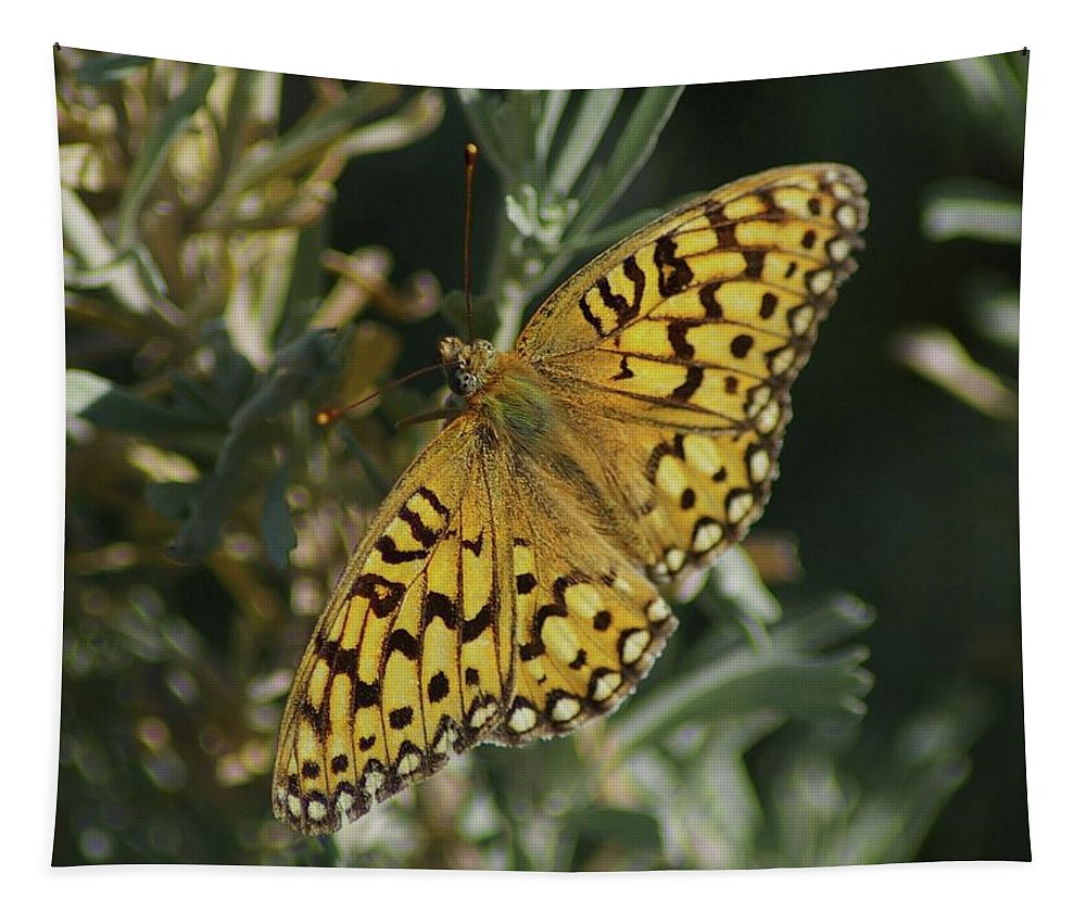 Butterfly Tapestry featuring the photograph Butterfly by Jeff Swan