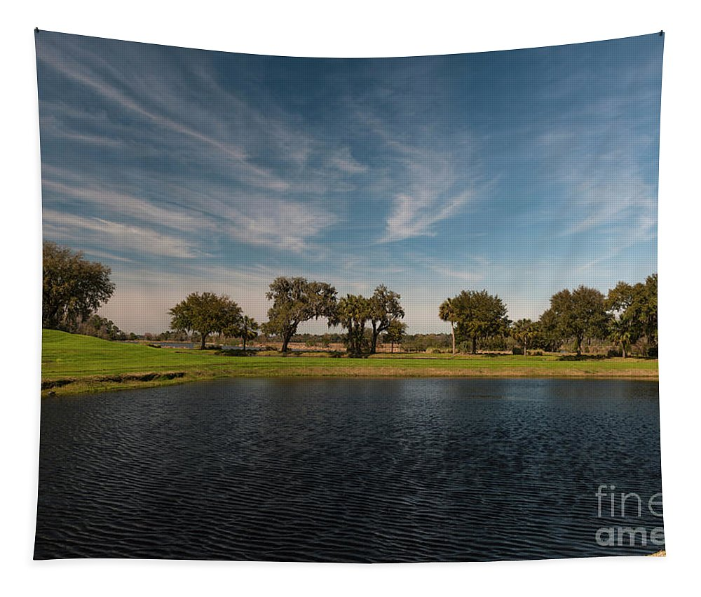 Middleton Tapestry featuring the photograph Butterfly Lake At Middleton Place by Dale Powell