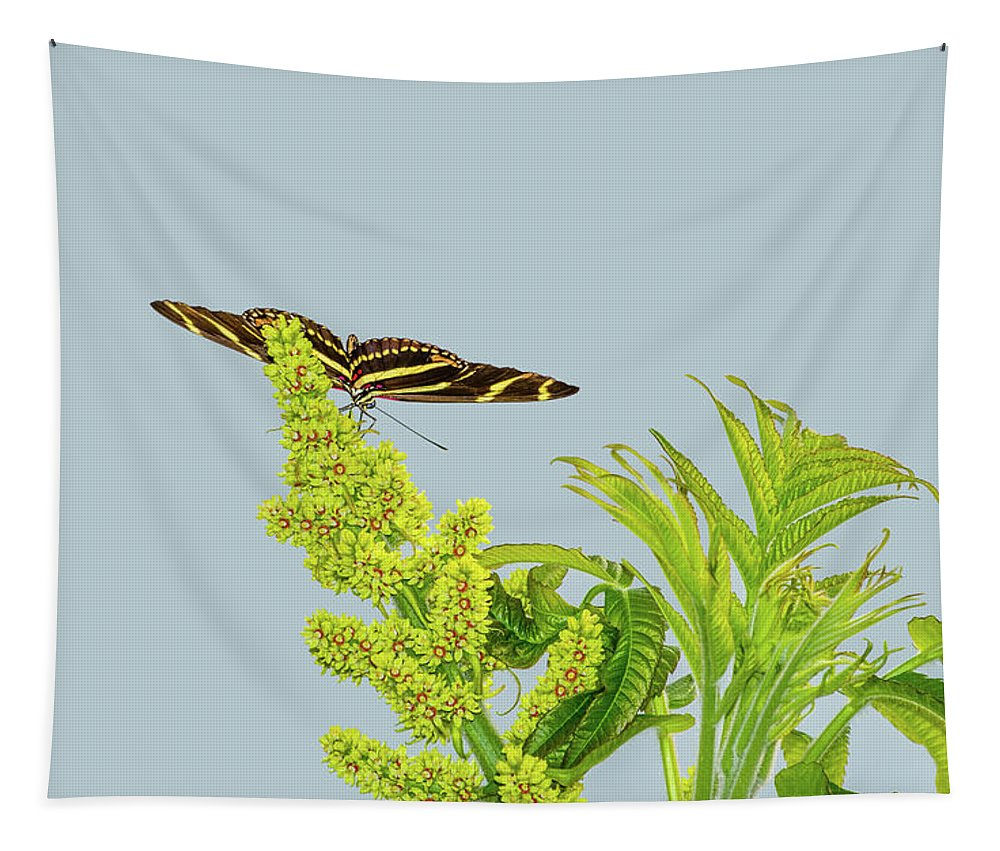 Animal Tapestry featuring the photograph Butterfly On Flower Cluster by Marv Vandehey