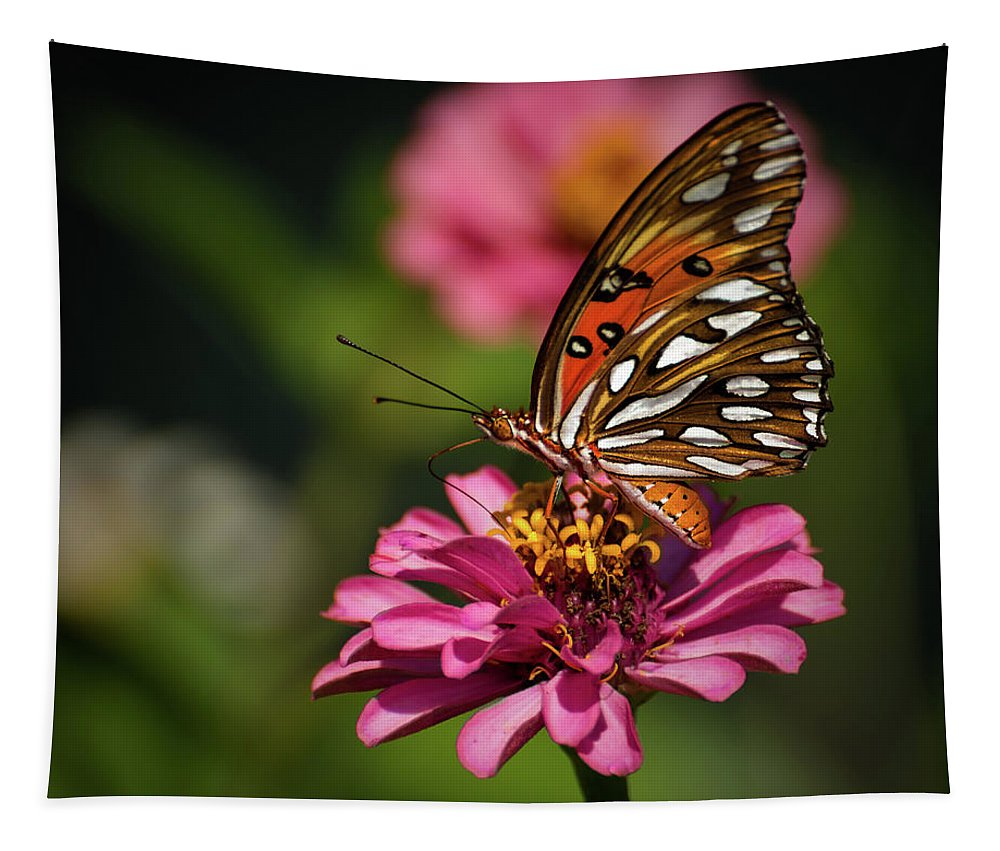Butterfly Tapestry featuring the photograph Butterfly On Zinnia by Zina Stromberg