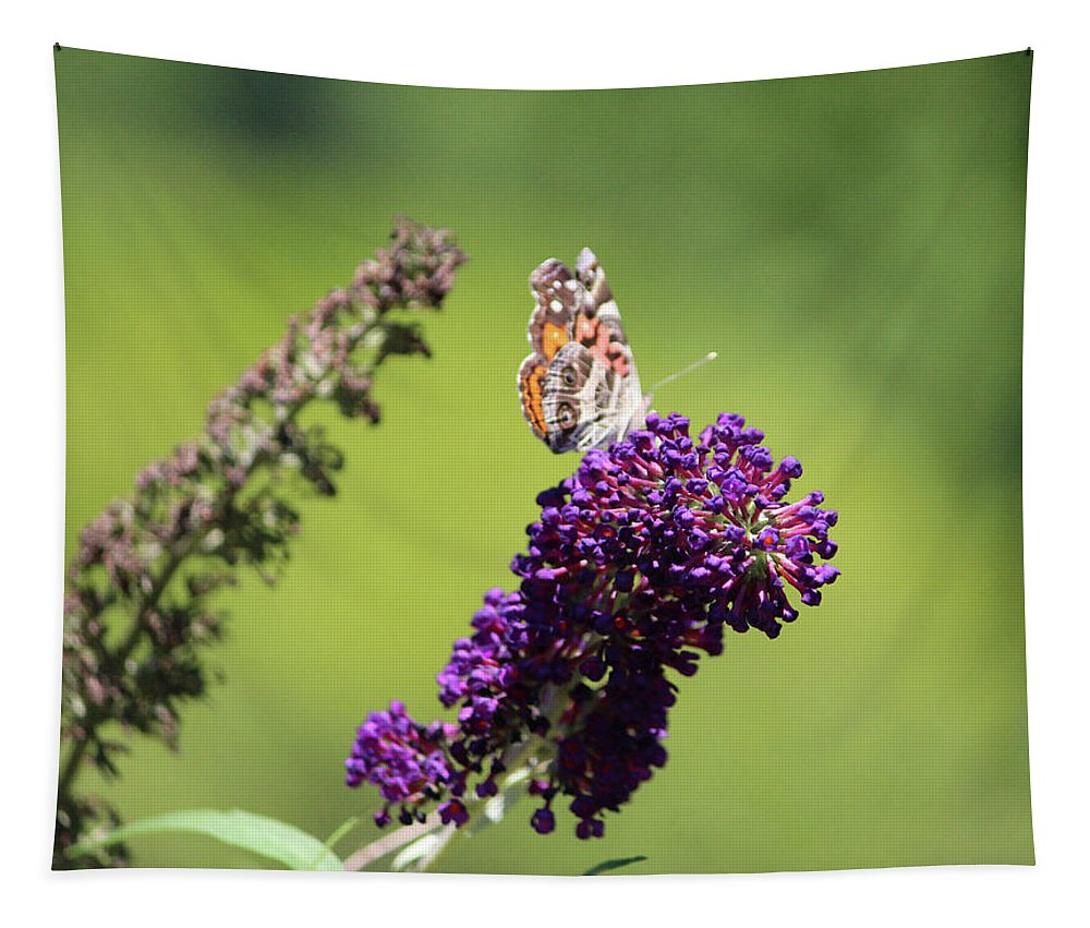 Butterfly Tapestry featuring the photograph Butterfly With Flowers by Cynthia Guinn