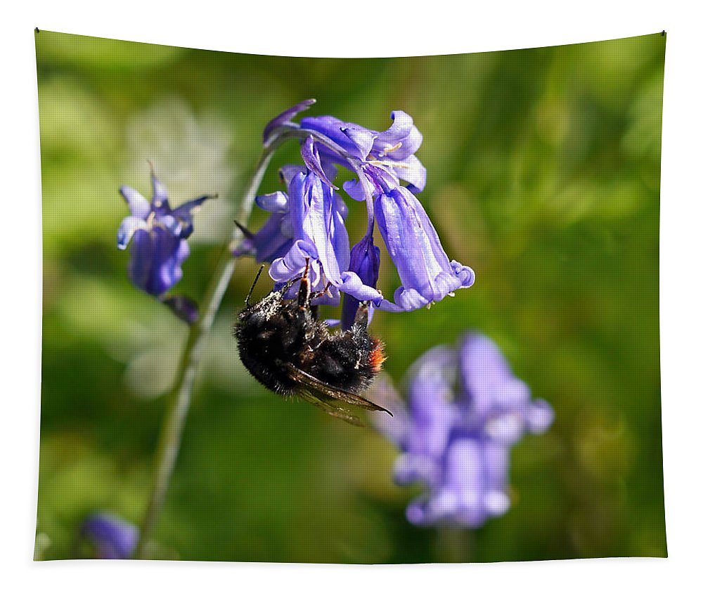 Bluebells Tapestry featuring the photograph Buzzy Bee On Bluebells by Susie Peek