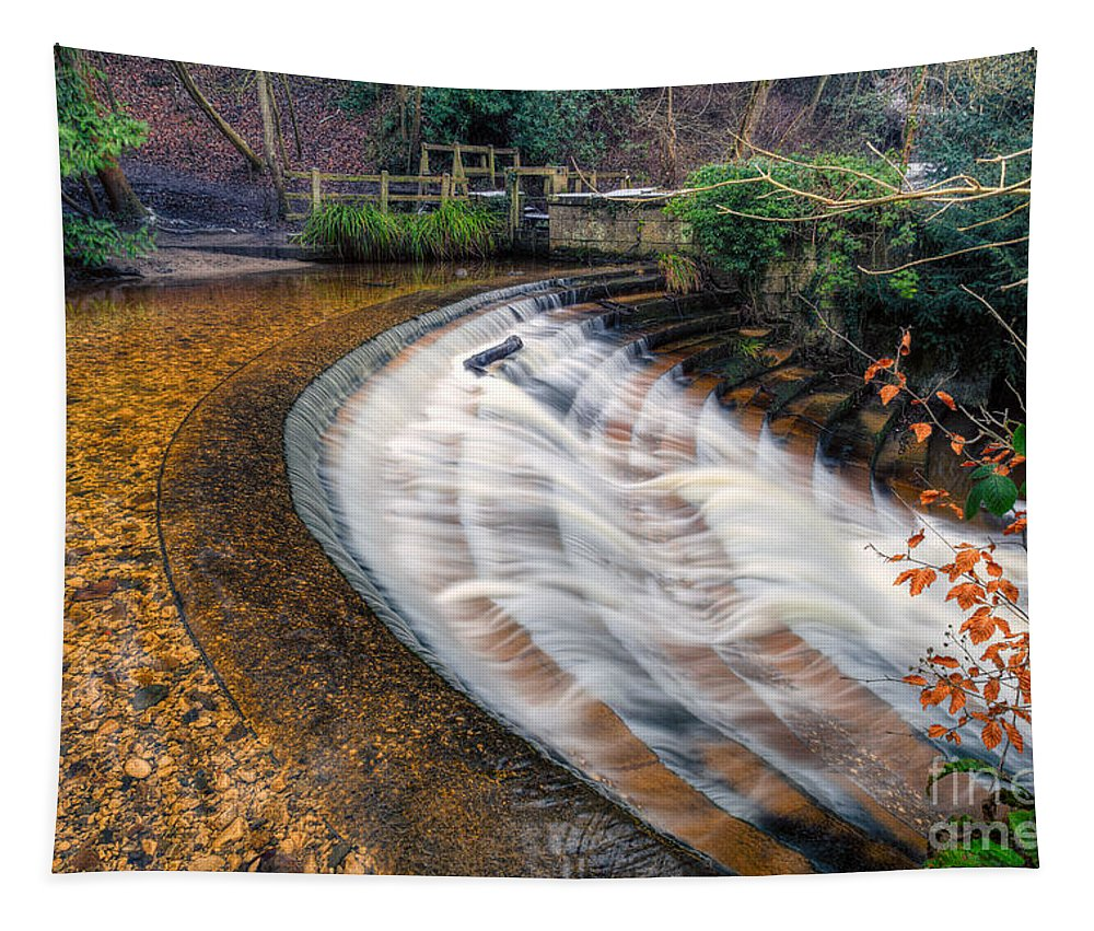 Architecture Tapestry featuring the photograph Caeau Weir by Adrian Evans